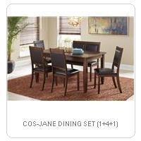 COS-JANE DINING SET (1+4+1)